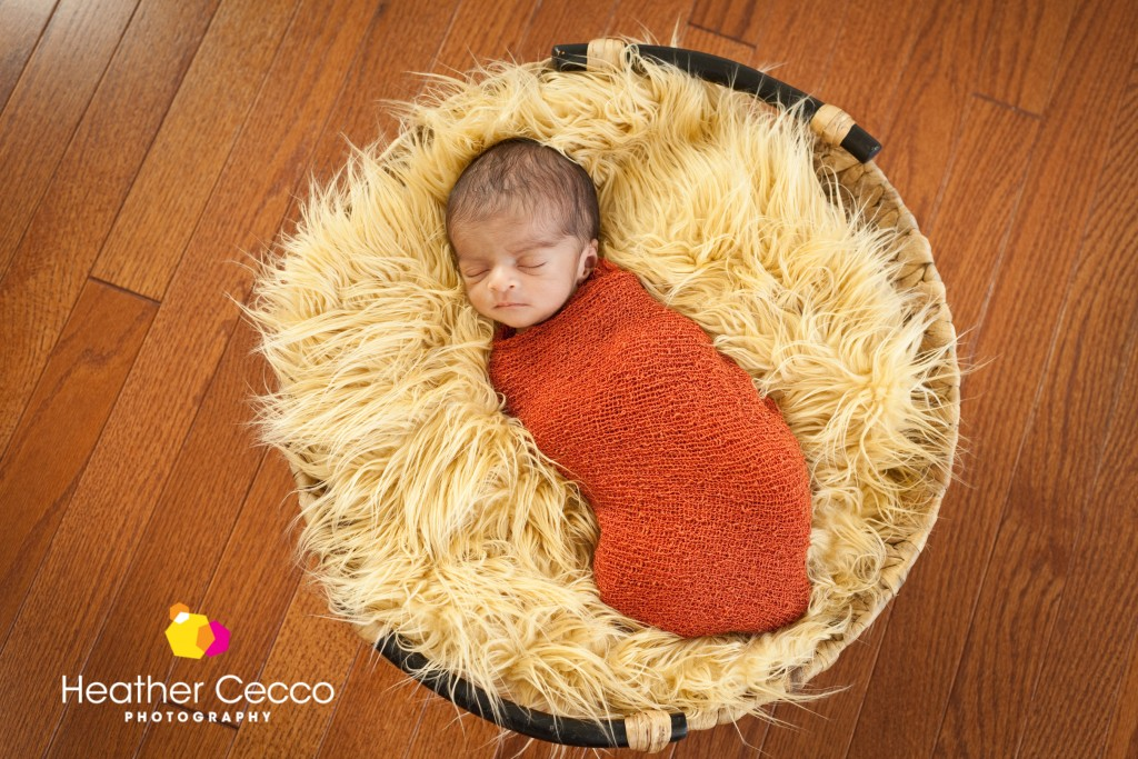 newborn photographer malvern newtown square-008