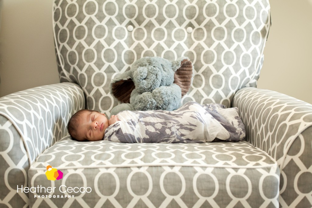newborn photographer malvern newtown square-010