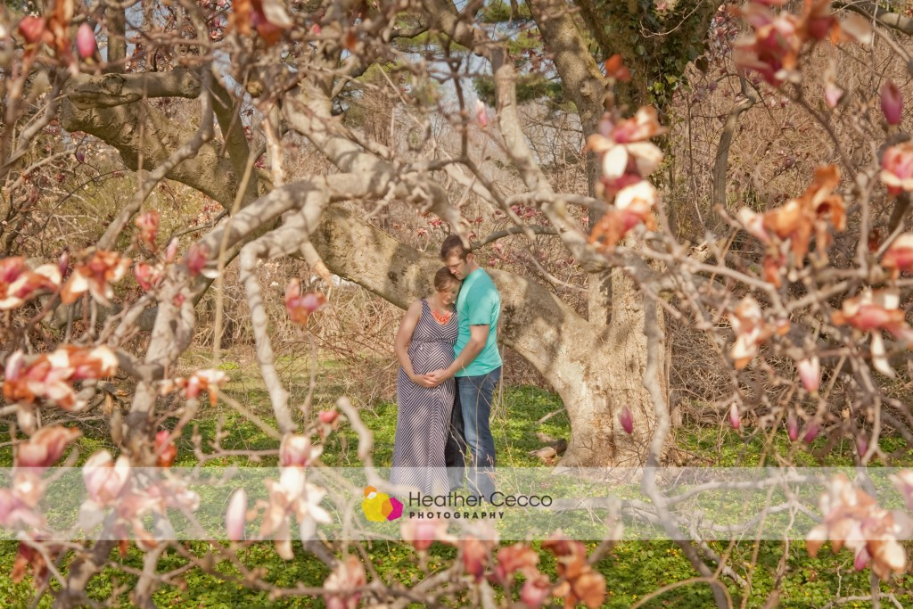 maternity photographer malvern-004